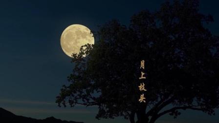许嵩写的中秋思乡的歌, 却被张杰张靓颖给唱火了, 这首《燕归巢》让人想家