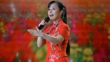 我滴妈呀! 王二妮这首歌太好听了, 2018竟下载破亿, 你听过吗
