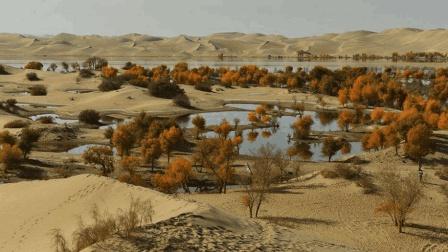 如何改造塔克拉玛干沙漠, 有人提出引入藏水治理