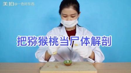 美女把猕猴桃当做尸体解剖, 她这样做到底是为了什么呢