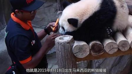 全世界都想借的大熊猫, 这货竟然被人给退了