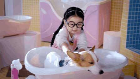 小公主阿拉蕾和萌犬到底谁更可爱? 《营救汪星人》将给你答案