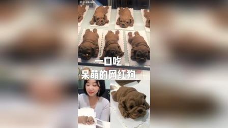 【美食探店】重庆解放碑呆萌网红沙皮狗蛋糕