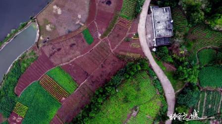 9月27日航拍秋天的四川乡村