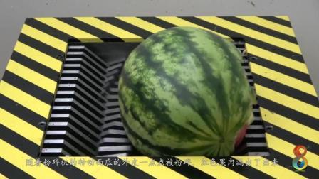 奇趣实验: 将西瓜放入粉碎机中粉碎, 难得一见的场景!