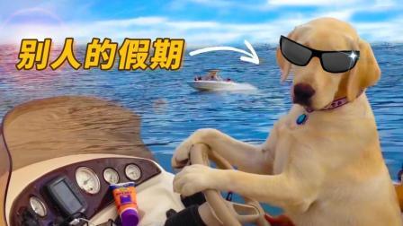 狗子告诉你什么是别人的假期! 羡慕嫉妒恨!