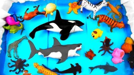 动物园海洋馆卡通玩具展示