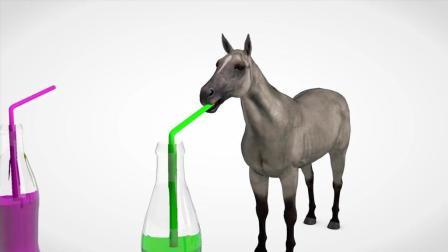 亲子益智早教小马喝彩色果汁