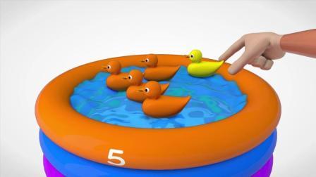 彩色小鸭子在游泳池游泳