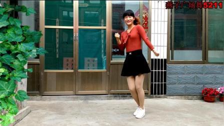 燕子广场舞5211《踏浪》演唱: 徐怀钰 动感好看 经典歌曲 好听