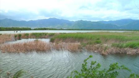 官厅水库野鸭湖
