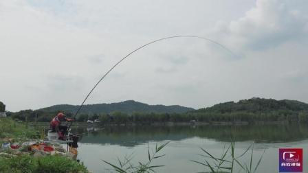 你知道钓大鱼为什么要用长竿吗? 遇见大鱼控鱼时你就知道了!