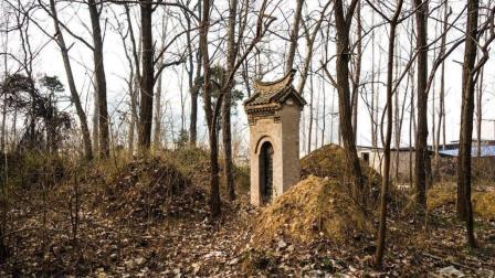山西一农田不长庄稼, 专家: 下面有宝藏, 挖开发现是秦始皇祖先墓