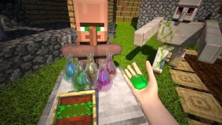 【我的世界】minecraft动画 - 村民的生活(或另一天的村民)