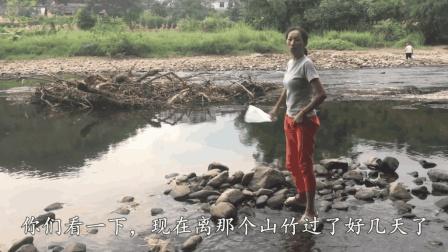农村小妹在河边发现什么了? 30分钟捡了一袋, 高兴坏了