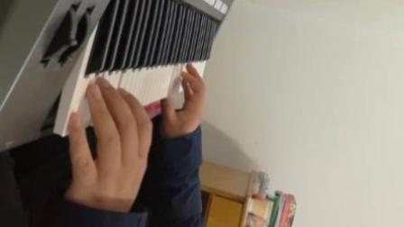 电子琴演奏《学生演奏梦中的额吉》