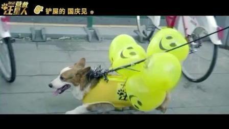 电影《营救汪星人》的狗狗主演员自己上街宣传, 萌翻路人!