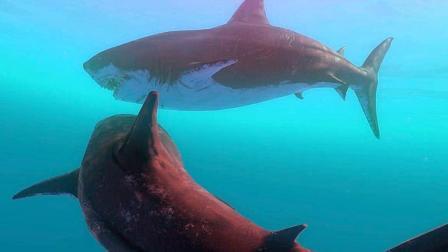 超级大白鲨!这才是真正的海洋之王者!【海底大猎杀】Ep12