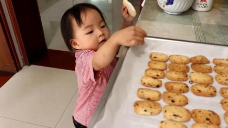 自制蔓越莓饼干, 方法和诀窍都教你, 2分钟就能学会