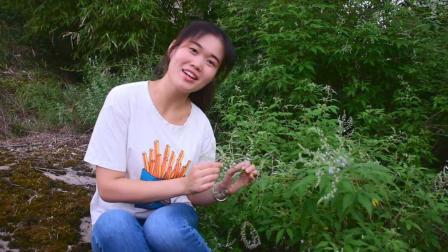 农家女孩唱了一首《茶山情歌》, 声音太甜了, 大家快来听听!