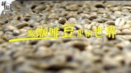 辣报 新华社资讯 一颗咖啡豆里的世界