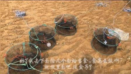 小倪赶海篇: 今天下蟹笼抓螃蟹, 跟渔民大爷学习经验
