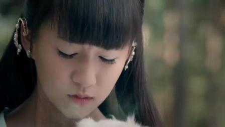 千年白狐被射伤, 幸好遇上爱心小女孩, 救它一命