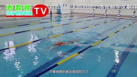 想学专业的蛙泳就来这里看吧