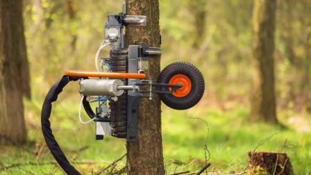 这个机器厉害了, 专门对付多余的树枝, 就像猴子一样上蹿下跳的