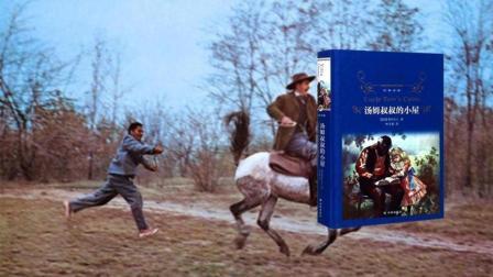 有书快看 5分钟读《汤姆叔叔的小屋》一部黑奴血泪史,美国南北战争导火索