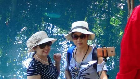 四个女人去旅游