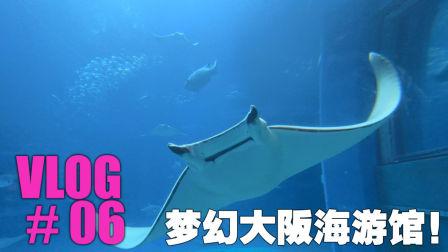 大囍记VLOG#06 梦幻大阪海游馆