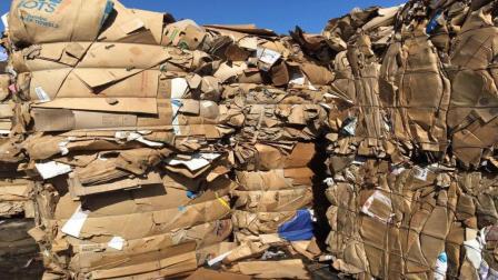 为什么国家要禁止进口废玻璃和特种纸? 今天可算知道了