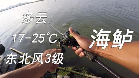 江南路亚钓鱼记  国庆 围塘岸钓海鲈