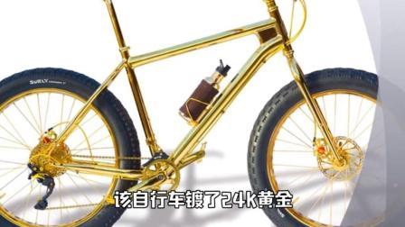 世界上最贵的自行车, 网友: 咱还是老老实实的搬砖吧!
