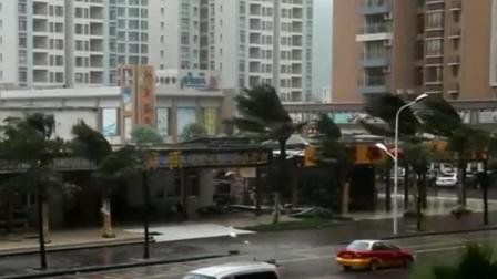 台风来袭, 树木飘摇倒地, 街道上一片狼藉!