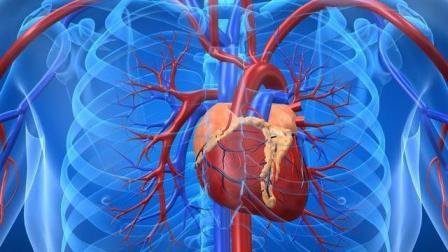 胸口正中间痛是怎么回事? 有可能是心脏病引起的