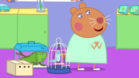 粉红猪小妹: 仓鼠兽医的乌龟