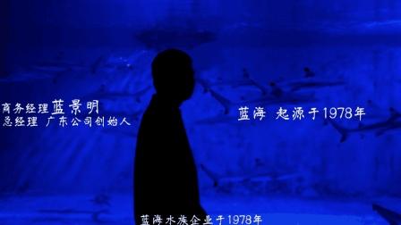 蓝海企业宣传片