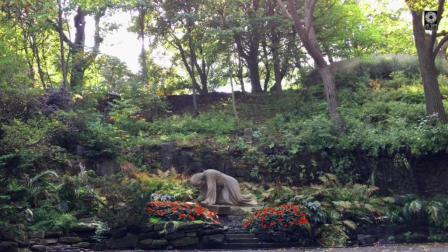 1小时 减压轻音乐 清晨皇家园林里的阳光 大自然观赏 催眠 放松头脑 静化心灵