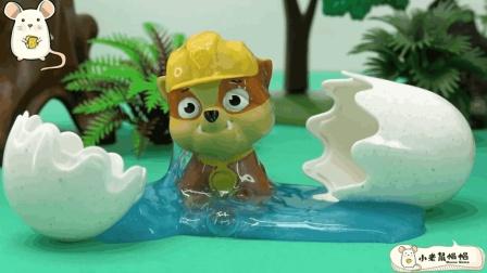 咦? 小砾怎么了, 为何在曲奇蛋里面? 儿童汪汪队玩具故事
