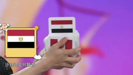 王恒屹认国旗, 简直就是神童!