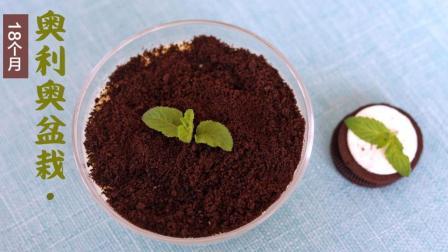 奥利奥盆栽, 奶香浓郁, 口感细腻爽滑, 宝宝爱吃还不腻!