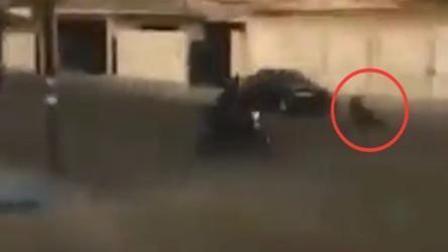 人质顶开后备箱跳出逃命 歹徒杀回马枪将其辗毙