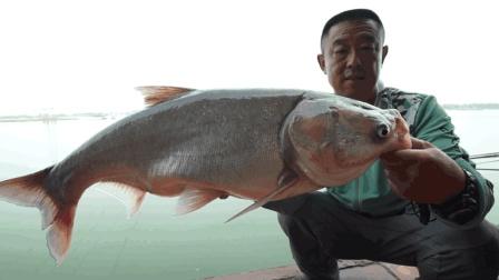 《游钓中国4》第20集 大毛授徒擒鲢术 永财圆梦手竿钓鲢