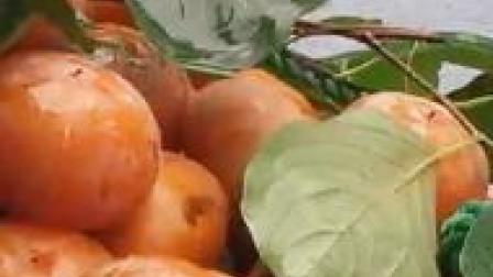 专家:柿子酸奶一起吃是没问题的 得胃结石可能因为吃太多!