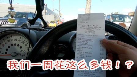 揭秘我们的生活费,参加家具展,超市采购(新西兰 Harold Vlog 393)
