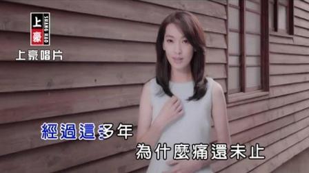 陳淑萍-愛恨入心【KTV導唱字幕】