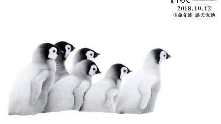 奥斯卡最佳纪录片!《帝企鹅日记2》强势回归!南极萌物等你来!