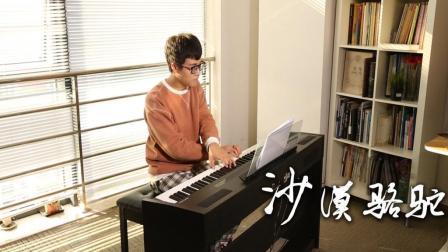 沙漠骆驼-钢琴版, 超带劲!